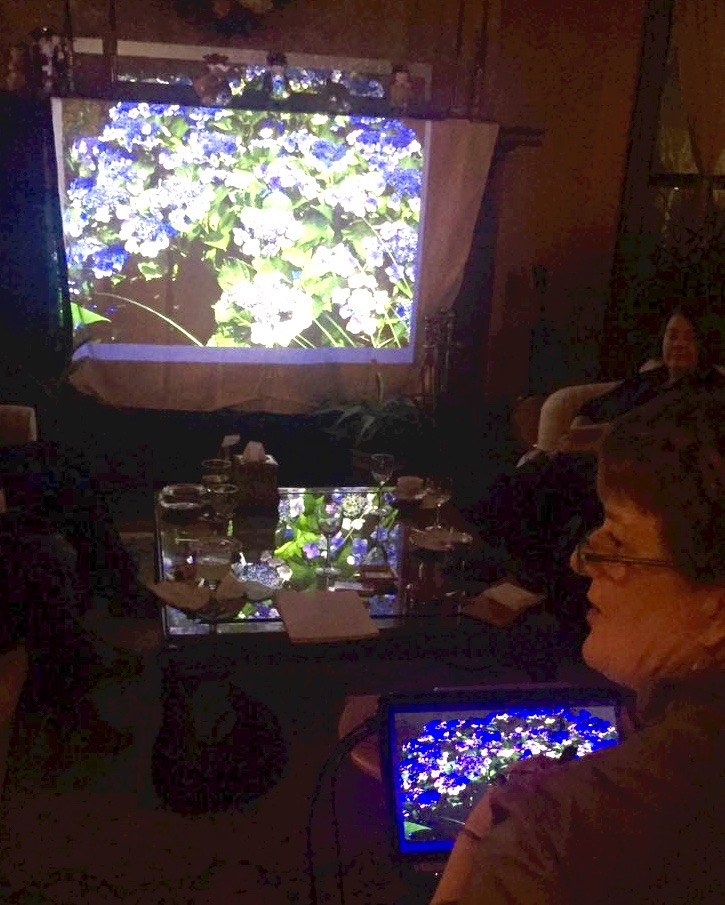 Mil presented a new powerpoint presentation about hydrangeas.